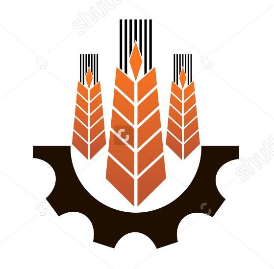Всё для послеуборочной обработки зерновых!